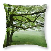 Cool Misty Day At Blackbury Camp Throw Pillow