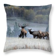Cool Misty Morning Throw Pillow