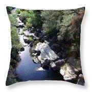 Cool Mountain Creek Throw Pillow