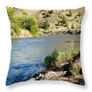 Cool N Fresh Throw Pillow