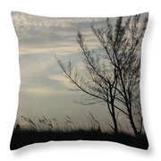 Cool Winters Day Throw Pillow