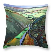 Coombe Valley Gate, Exmoor, 2009 Acrylic On Canvas Throw Pillow
