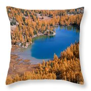 Cooney Lake Larches Throw Pillow