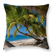 Cooper Island Throw Pillow by Adam Romanowicz