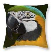 Cooper... Throw Pillow