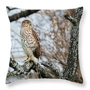 Coopers Hawk 0748 Throw Pillow