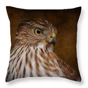 Coopers Hawk Portrait 2 Throw Pillow