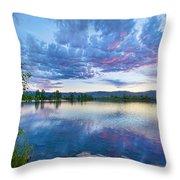 Coot Lake View Throw Pillow