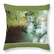 Coots Throw Pillow