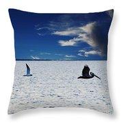 Copano Bay Sunset Flight Throw Pillow