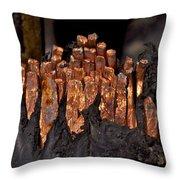 Copper Candles--junkyard Macro No. 3 Throw Pillow
