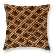 Copper Electron Micrograph Grid Throw Pillow