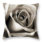 Copper Rose Throw Pillow