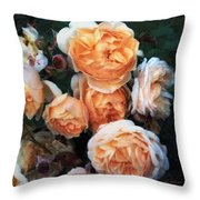 Copperblush Throw Pillow