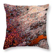 Copperspill Throw Pillow