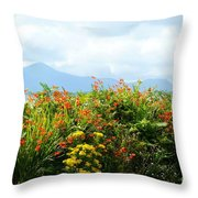 Coppertips On The Dingle Peninsula Throw Pillow
