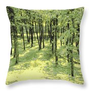 Copse Of Trees Sunlight Throw Pillow