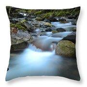 Coquihalla River 2 Throw Pillow