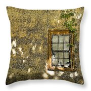Coquina Door And Window Db Throw Pillow