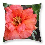 Coral Desert Rose Throw Pillow