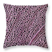 Coral From Guadalupe Throw Pillow