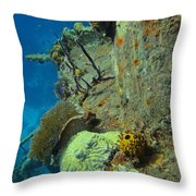 Coral Growth On A Ship Wreck Throw Pillow
