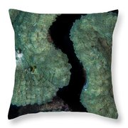Coral Puzzle Throw Pillow