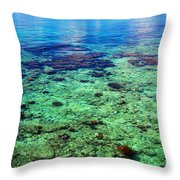 Coral Reef Near The Island At Peaceful Day. Maldives Throw Pillow