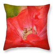 Coral Rose Throw Pillow