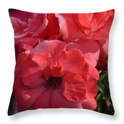 Coral Roses 2013 Throw Pillow