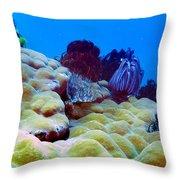 Corals Underwater Throw Pillow