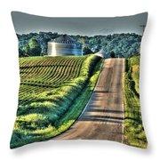 Corduroy Corn And Seersucker Silos Throw Pillow