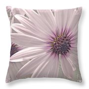 Coreopsis - Dreaming In Pink Throw Pillow