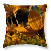 Coreopsis Summer 2010 Throw Pillow