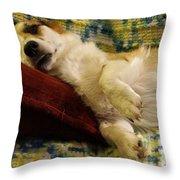 Corgi Asleep On The Pillow Throw Pillow