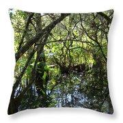 Corkscrew Swamp 3 Throw Pillow