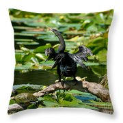 Cormorant And Turtle Throw Pillow