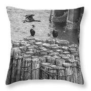 Cormorant Landing Black And White Throw Pillow