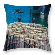 Cormorant Landing Throw Pillow