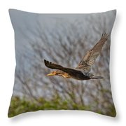 Cormorant On Wings Throw Pillow
