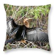 Cormorant Wingspan Throw Pillow