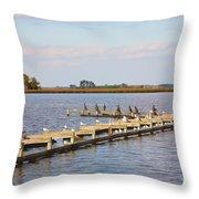 Cormorants And Seagulls On Old Dock Near Blackwater  National Wildlife Refuge Near Cambridge Md Throw Pillow