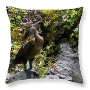 Cormorants-one Throw Pillow