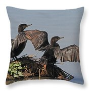 Cormorants Sunbathing Throw Pillow