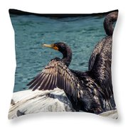 Cormorants Throw Pillow