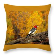 Corn Fed Woodpecker Throw Pillow