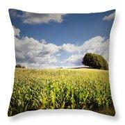 Corn Field Throw Pillow