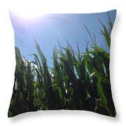 Corn Maze 02 Throw Pillow