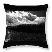 Corn Maze 03bw Throw Pillow