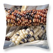 Corn Of Many Colors Throw Pillow by Caitlyn  Grasso